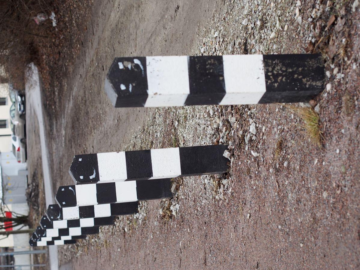 P4134584.JPG