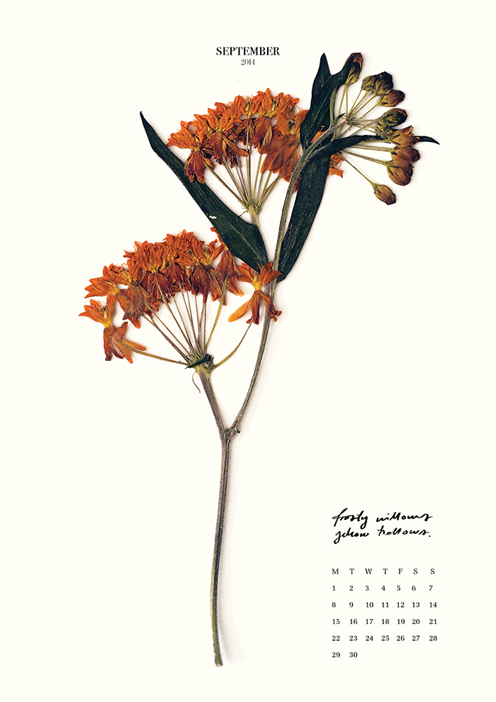 Musla_calendar_20149.png