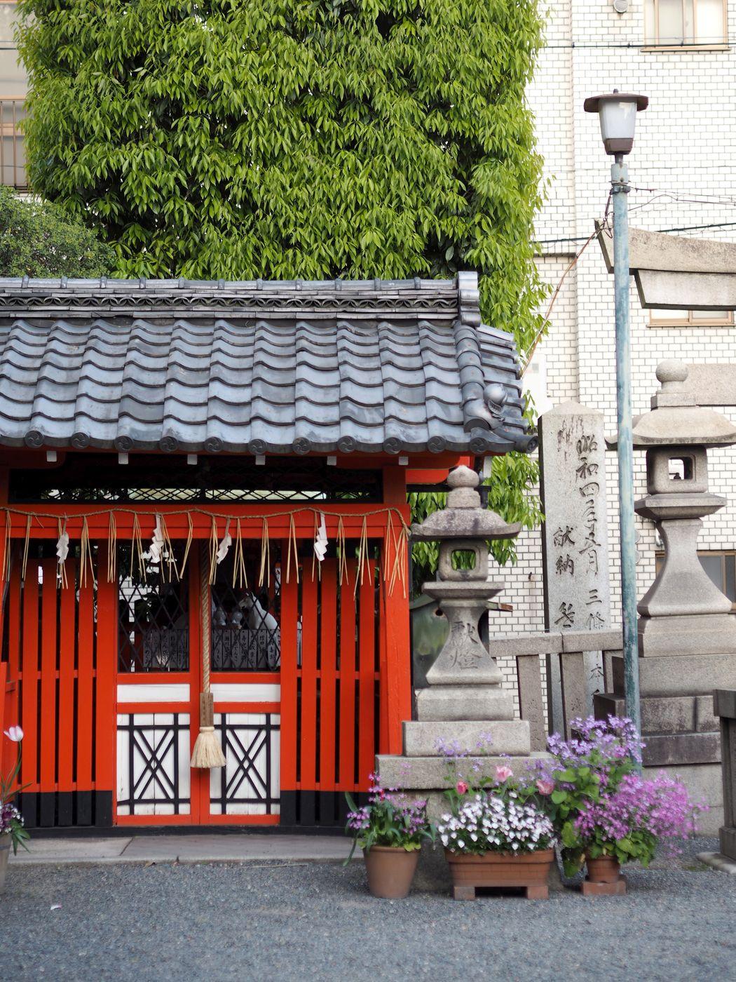kioto11.jpg