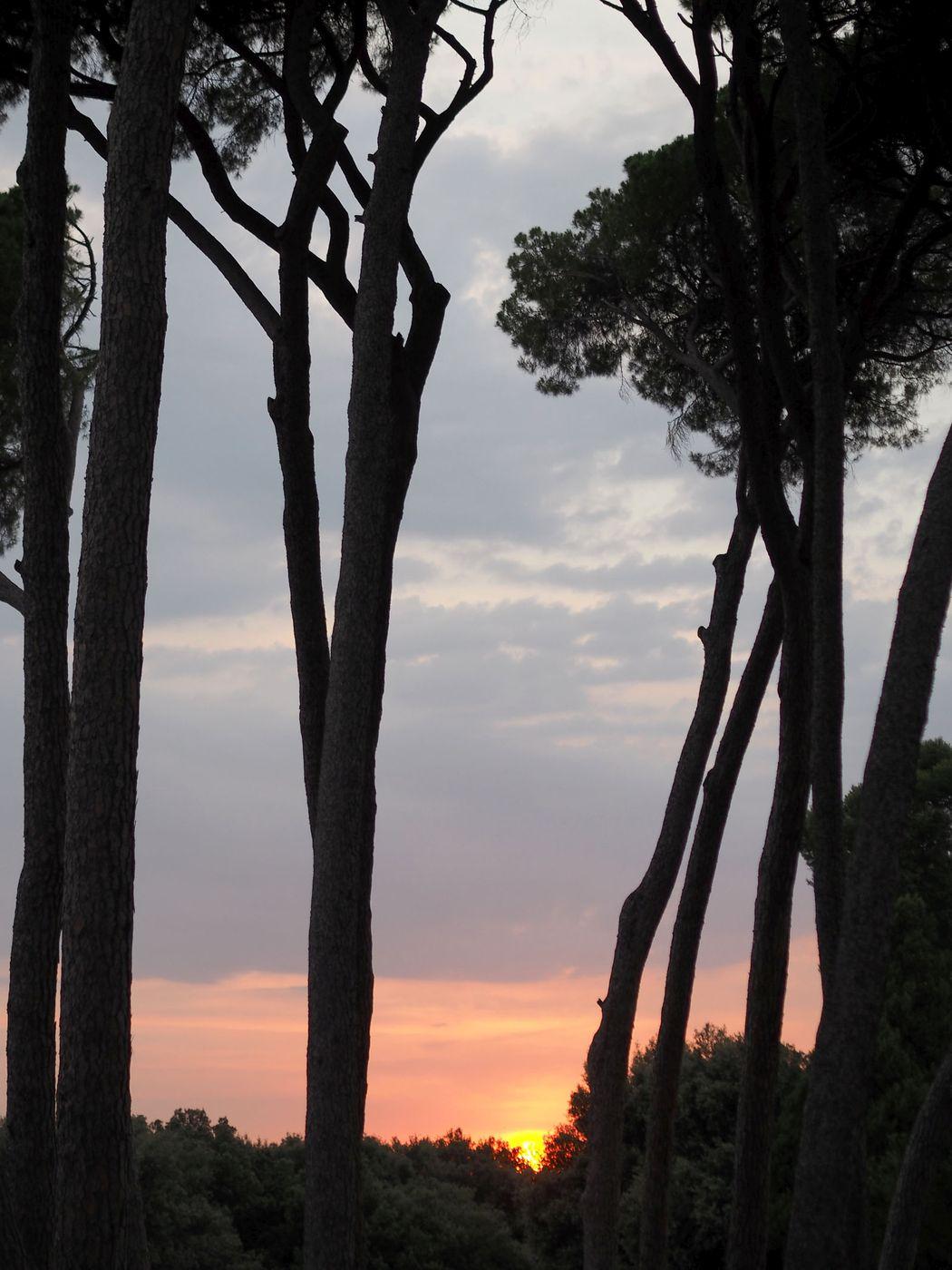 rooma-auringonlasku3.jpg