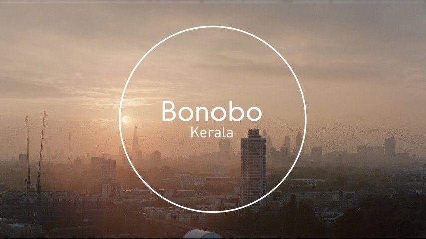 bonobo-kerala