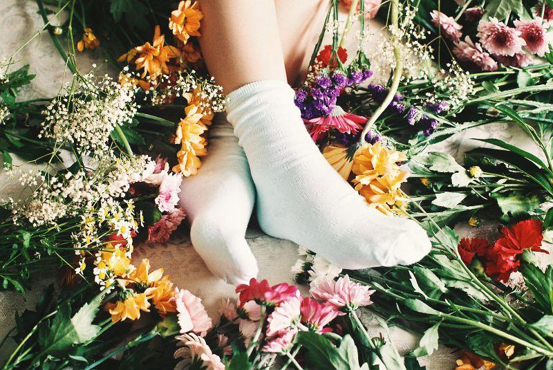 in-bloom2.jpg