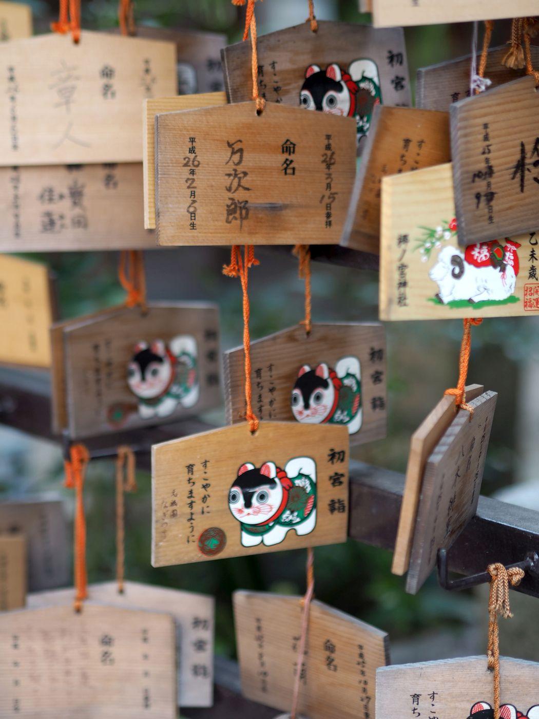 kioto12.jpg